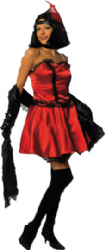 Can Can Dancer Costume (341870)